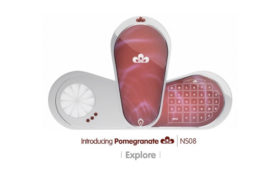 Pomegranate Phone