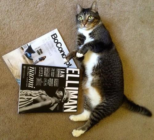 Hamlet-Magazines
