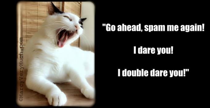 Anti-spam Cat